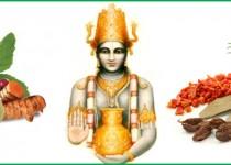column Ayurveda